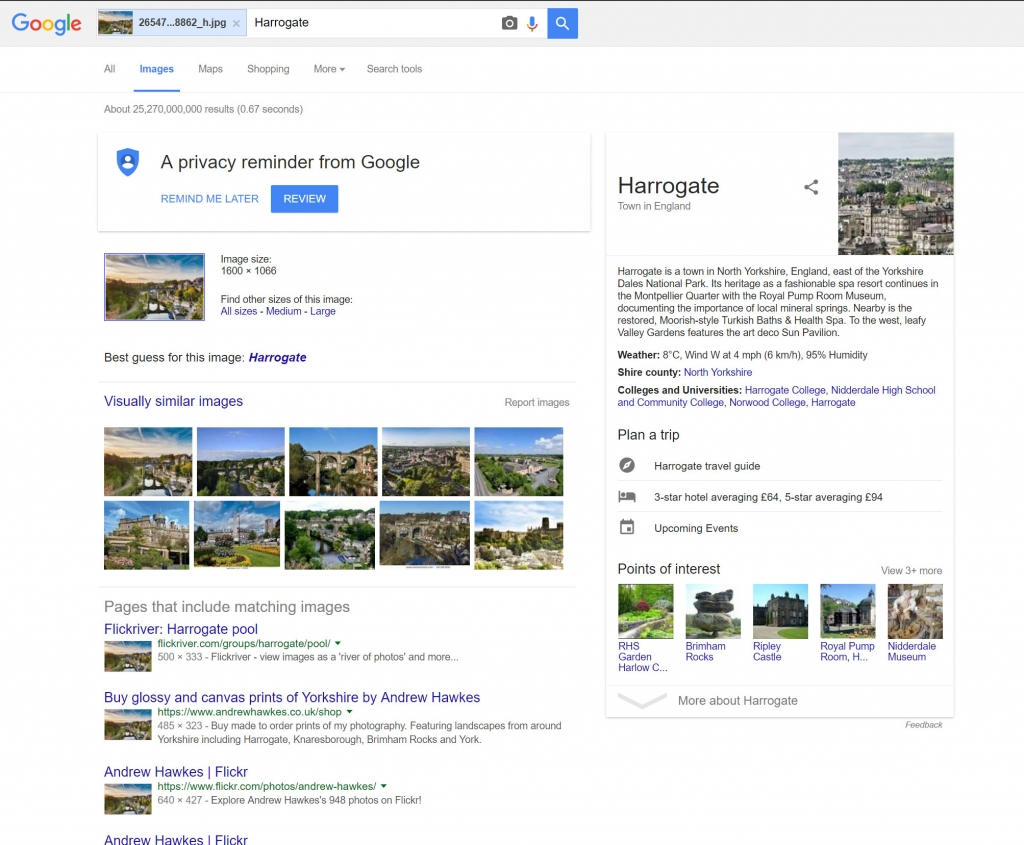 Google search by image results