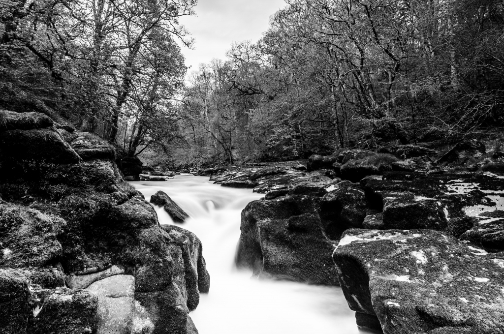 The Strid - Bolton Abbey